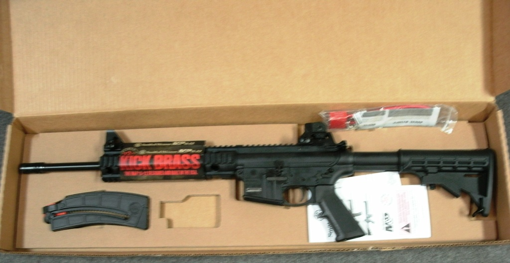 s w mp15 22 cal rifle in 22lr